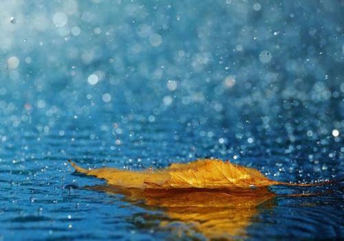 Como eu posso ajudar a combater as enxurradas de verão e reaproveitar a água da chuva?